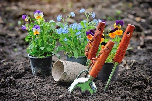 Sektor ogrodniczy